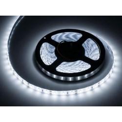 Sznur diodowy 5m Rebel (300x5630 SMD), zimny biały, wodoodporny, 12V LED0132-2
