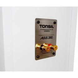 Zestaw stereofoniczny audio Yamaha R-S202D + potężne kolumny podłogowe Tonsil Altus 280